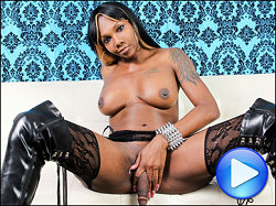 black tgirls elektra